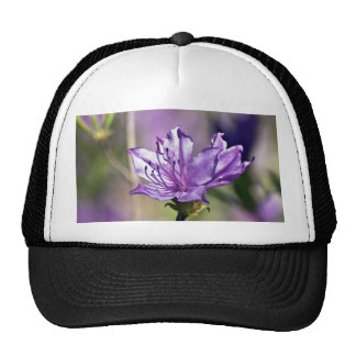 Pink Rhododendron Mesh Hat