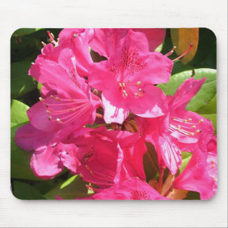 pink rhododendron mouse pad