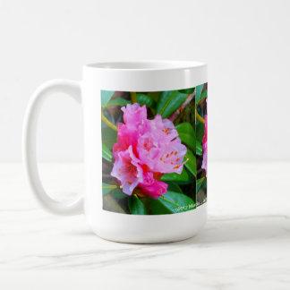 Pink Rhododendron on White mug