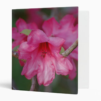 Pink Rhododendrons Avery Binder