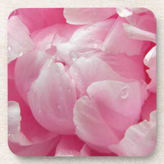 Pink romance blooming peony flower with dew drops coaster