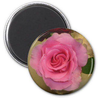 Pink Rose 2 Inch Round Magnet