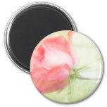 Pink Rose 2 Inch Round Magnet