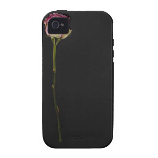 Pink rose 3 iPhone 4/4S covers