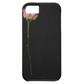 Pink rose 3 iPhone SE/5/5s case