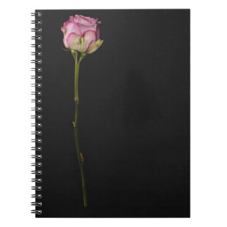 Pink rose 3 notebooks