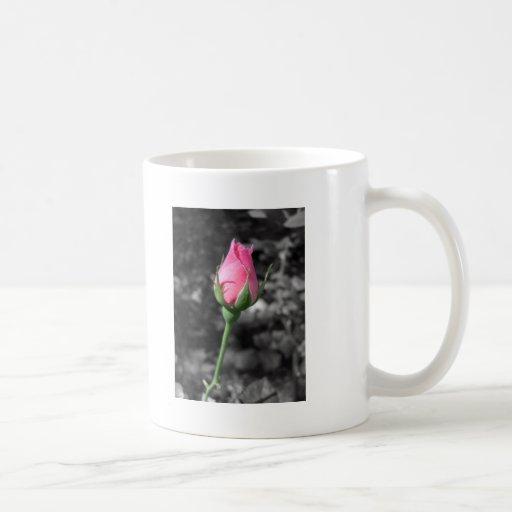 Pink Rose 4 Mug