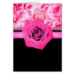 Pink Rose accent Black