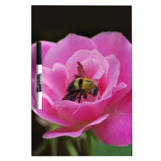 Pink Rose and bumble bee Dry-Erase Whiteboards