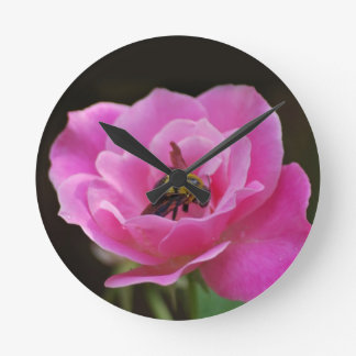 Pink Rose and bumble bee Round Clock