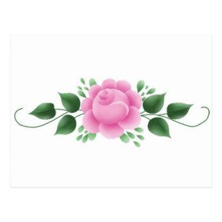 Pink Rose and vine Postcard