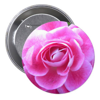 Pink Rose Bloom 3 Inch Round Button