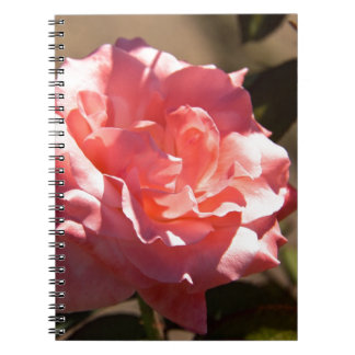 Pink Rose Blossom Notebook