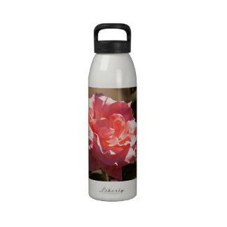 Pink Rose Blossom Drinking Bottles