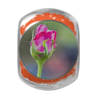 pink rose bud jelly belly candy jar