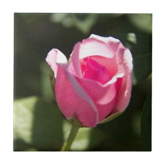 Pink Rose Bud Ceramic Tile