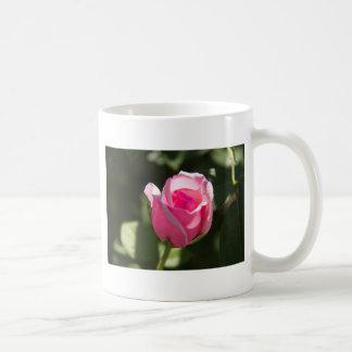 Pink Rose Bud Classic White Coffee Mug