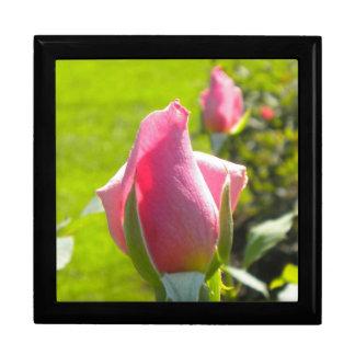 Pink Rose Bud Gift Box