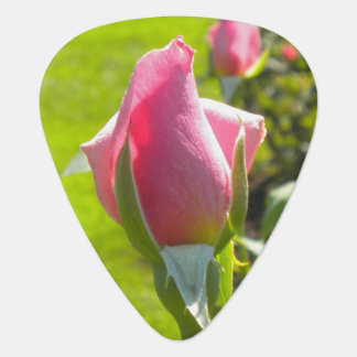 Pink Rose Bud Guitar Pick