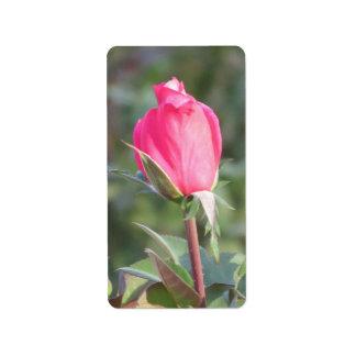 Pink Rose Bud Label Stickers Address Label