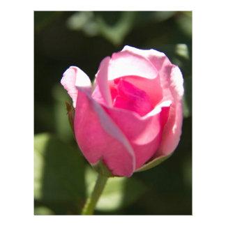 Pink Rose Bud Letterhead