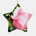 Pink Rose Bud with Water Drops Christmas Tree Ornaments