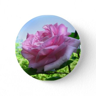 Pink Rose Button button