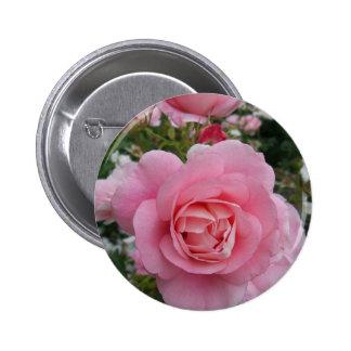 Pink Rose Pinback Button