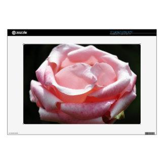 "Pink Rose Close-up 15"" Laptop Decals"