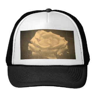 Pink Rose Close-up old photo Trucker Hat