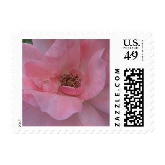 Pink Rose Customizable Postage