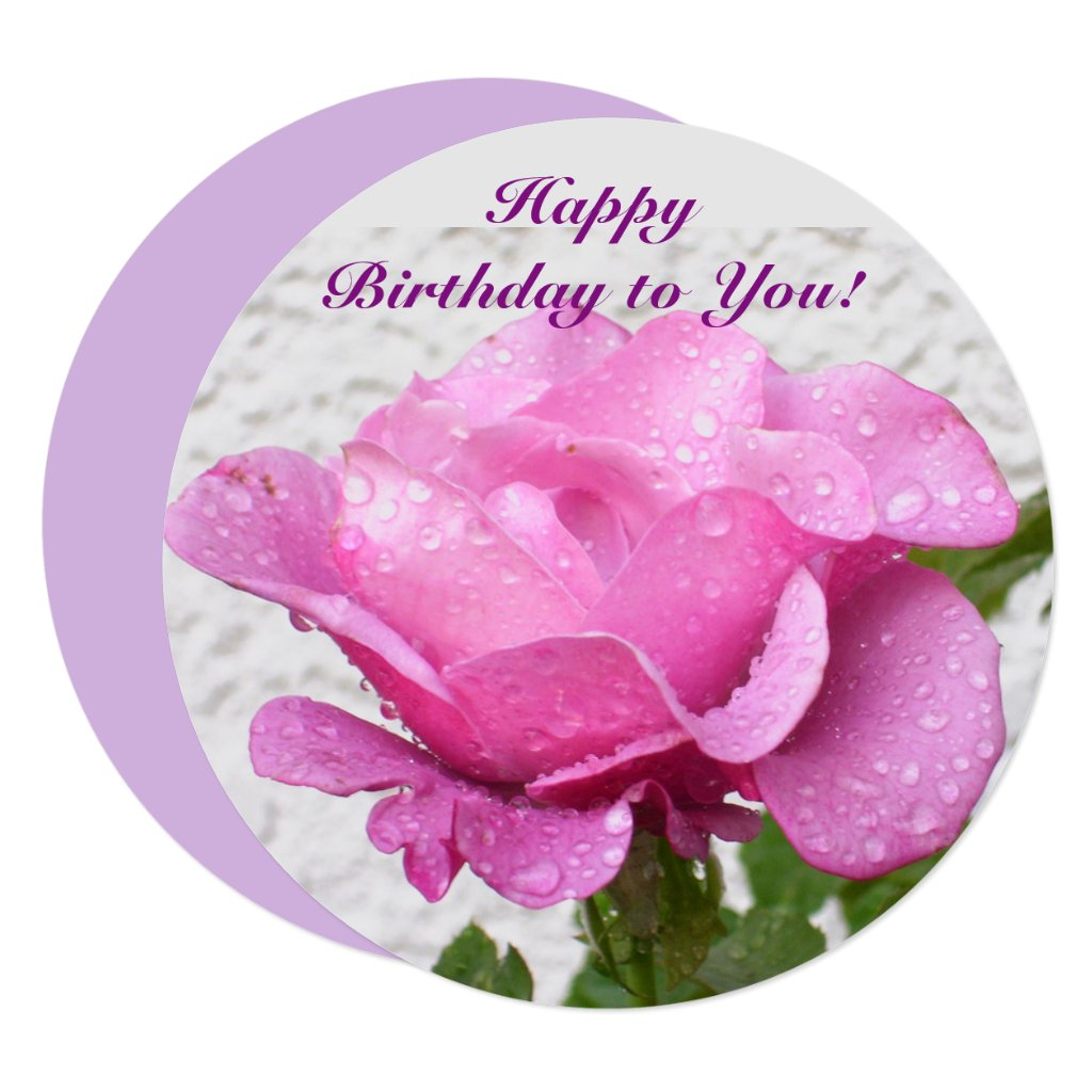 Pink Rose - floral card with inspirational quote