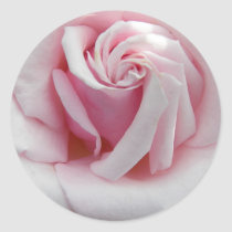 Pink Rose Floral Classic Round Sticker