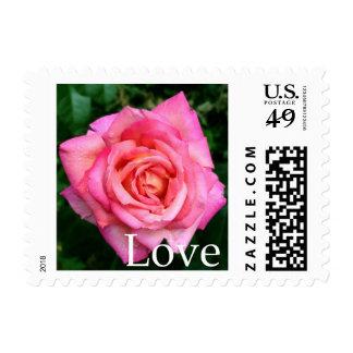 Pink Rose Floral & Love Postage Stamp - US Stamps