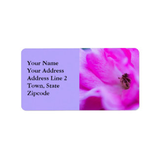 Pink Rose Floral Macro Absract Address Labels