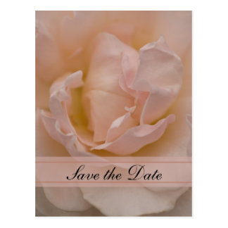 Pink Rose Floral Quinceañera Save the Date Postcard