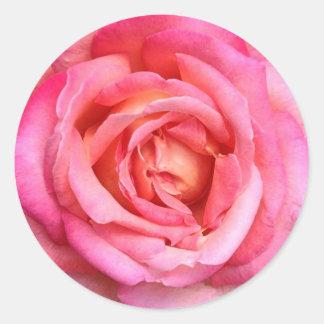 Pink Rose Floral Stickers Seals - Garden Rose
