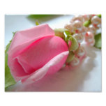 Pink rose flower bud with pearl necklace photo print