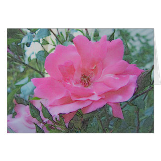 pink rose flower card