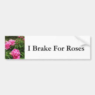 PINK ROSE - flower close up Bumper Stickers
