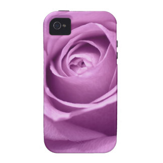 Pink Rose Flower Close-Up Photo iPhone 4 Covers