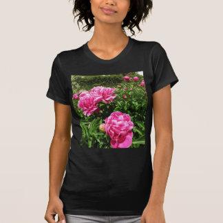 PINK ROSE - flower close up T-shirt