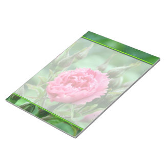 Pink rose flower, floral photography. memo pad