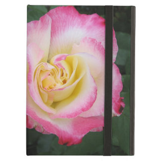 Pink Rose Flower iPad Air Cover