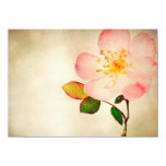 Pink Rose Flowers - Flower Roses on Watercolor 4.5x6.25 Paper Invitation Card