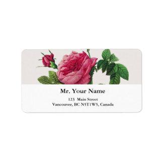 Pink  Rose flowers, Pierre Joseph Redouté Address Label