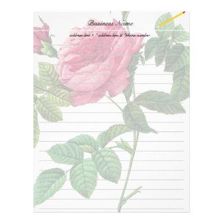 Pink  Rose flowers, Pierre Joseph Redouté Letterhead