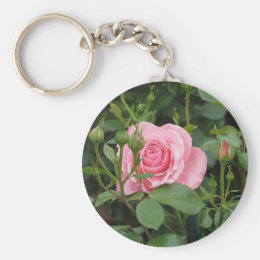 Pink rose flowers with water droplets in spring keychain