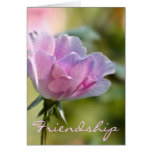 Pink Rose Friendship Card