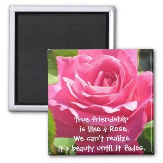 Pink Rose Friendship Magnet